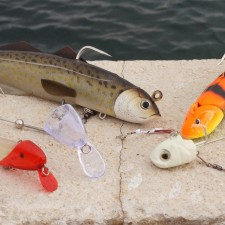 Photos de Leurres Top Fishing Downrigger Pro x5