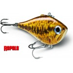 Photo de Leurre Rapala Rippin Rap 50mm