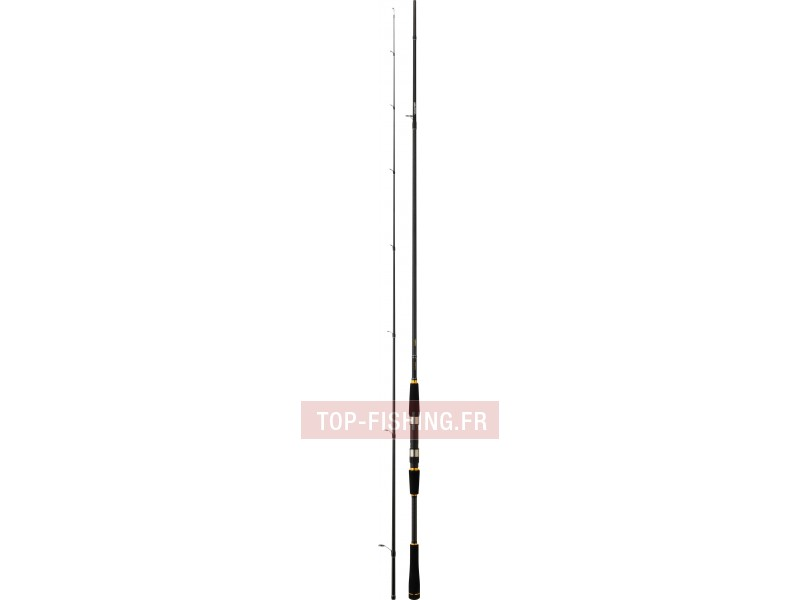 Canne Daiwa Legalis SHORE JIGGING