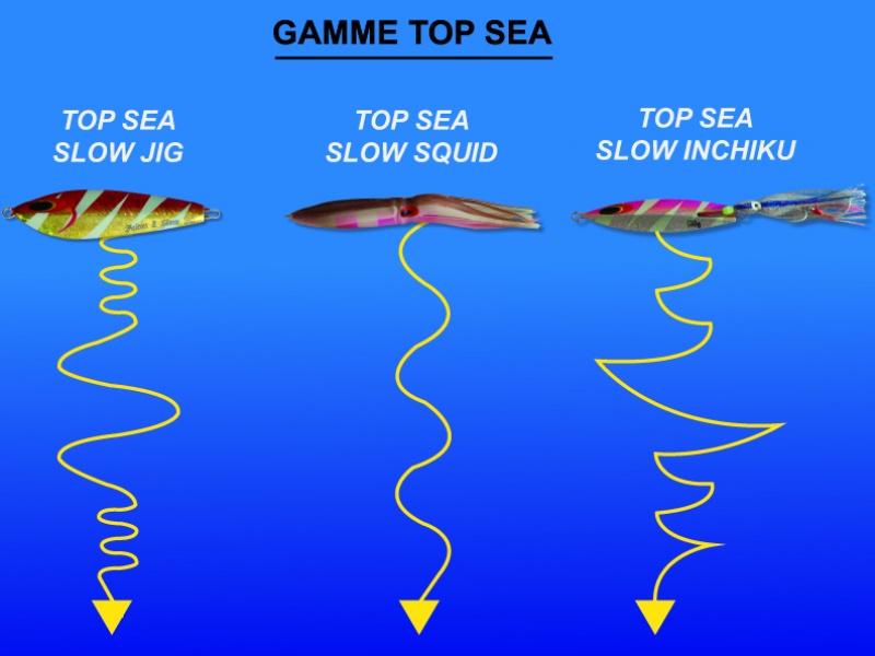 Nage à la descente de chaque leurre Top Sea!
