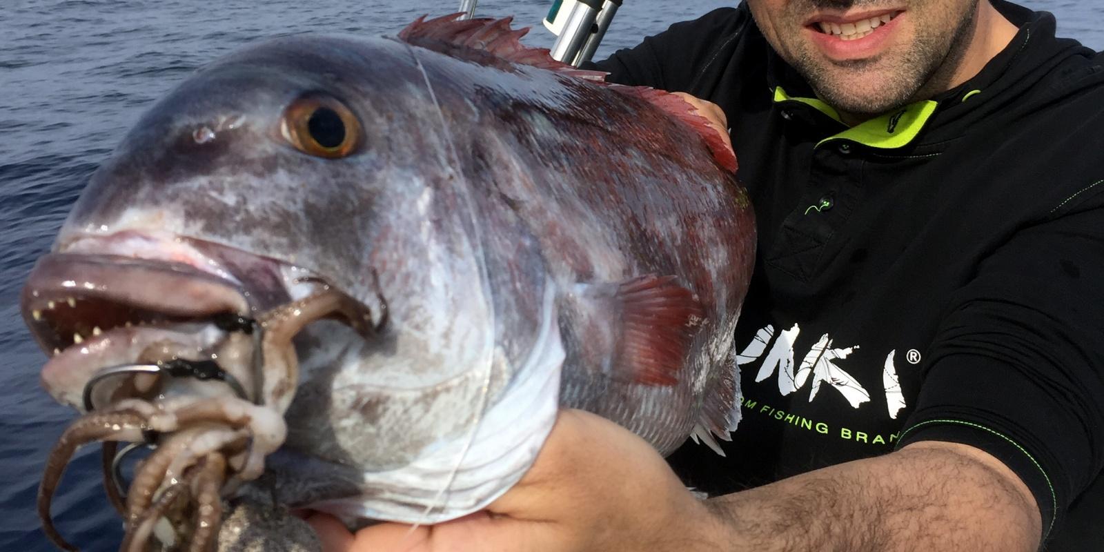 La pêche sur loeil septembre 2016